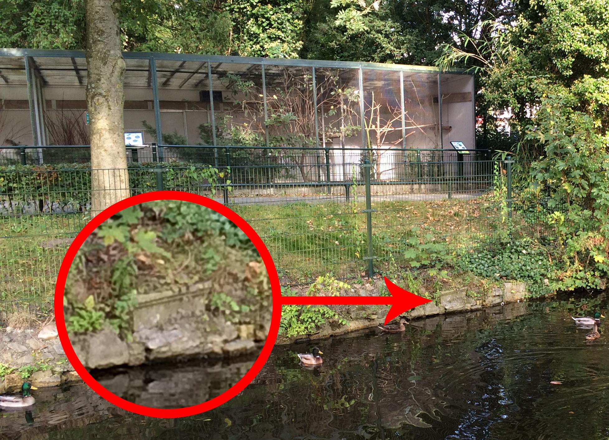 Zerken van geruimde graven werden in het verleden soms verwerkt in de oeverranden van de waterpartijen in de Alkmaarderhout. Foto: Regionaal Archief Alkmaar
